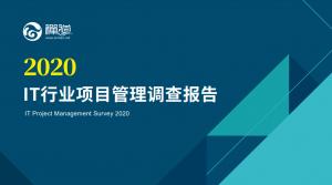 2020年IT行业项目管理调查报告
