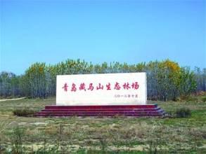 藏马山森林公园