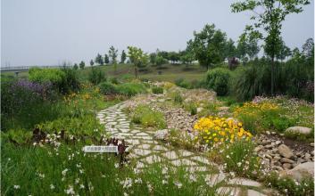 藏马山植物园
