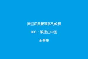 禅道项目管理系列教程3:敏捷在中国